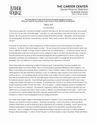 Resume Summary Sample Awesome Remarkable Personal Summary Examples