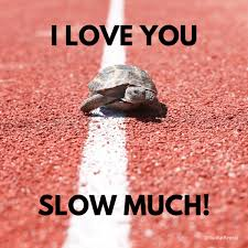 20,608 likes · 54 talking about this. Valentine S Day For Runners Memes For Instagram Facebook 2020 Run Eat Repeat