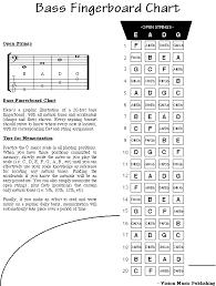 Bass Guitar Fretboard Notes Chart