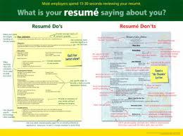 free resumefree resume outline