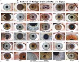 Optix Paper Colour Chart Eye Color Chart