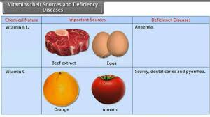 Vitamins What They Do Chart Vitamins Their Sources And Deficiency Diseases