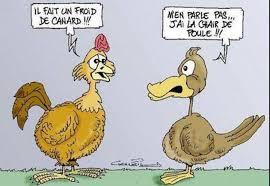 Blagues/histoires drôles et marrantes... - Blagues/histoires drôles et  marrantes | Facebook