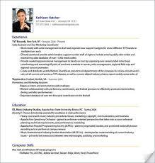 Professional Resume Samples Free Download Sample Resume Templates