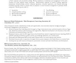Delighted Resume For Internal Auditor Position Pictures Inspiration