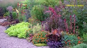 color garden. Front Garden Color