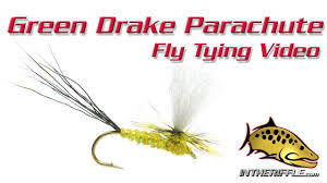 Green Drake Fly Pattern Awesome Inspiration
