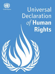 essay on the universal declaration of human rights