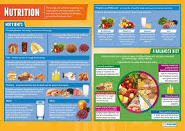Nutrition Food Chart Nutrition Pe Posters Gloss Paper Measuring 850mm X 594mm A1 Physical Education Charts For The Classroom Education Charts By Daydream