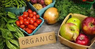 Kết quả hình ảnh cho rau hữu cơ