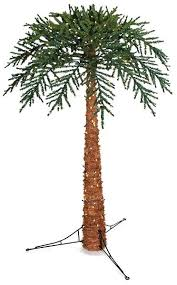 outdoor lighted palm tree tall and up to in width some trees have indoor outdoor lights outdoor lighted palm tree