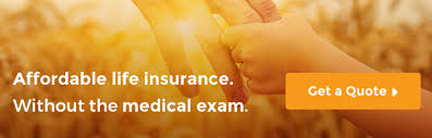 Term Life Insurance Quotes No Medical Exam Magnificent No Medical Exam Life Insurance Term Quotes Without A Physical