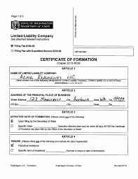 Business Operating Agreement Illinois Llc Operating Agreement Template Beautiful Forming A 9
