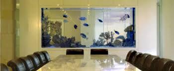Office aquariums Small Aquarium Al Adelaide Hire Fully Maintained Stocked Stanislasclub Office Fish Tank Ideas Home Design Ideas