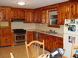 Resurface Kitchen Cabinet Doors Terrifying Cabinet Refacing Lowes Tags Refacing Kitchen Cabinet