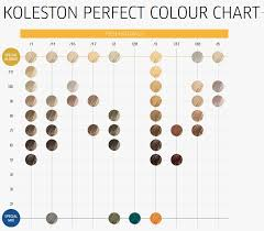 Wella Kp Colour Chart The Best Style What Exactly Is A Hair Color Booster Why