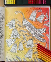 background for the top rated coloring books and writing utensils including watercolors colored pencils gel pens and drawing markers