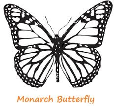 Realistic Butterfly Coloring Pages Color Bros