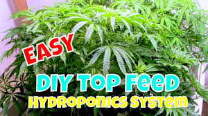 easy diy top feed drain to waste hydroponic system