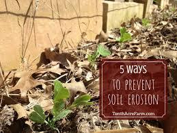 5 Ways To Prevent Soil Erosion Tenth Acre Farm