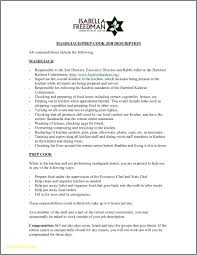 Resume Professional Summary Examples And Tips Skills For It English
