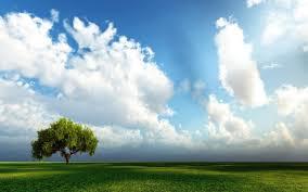 Kết quả hình ảnh cho hình ảnh thiên nhiên đẹp