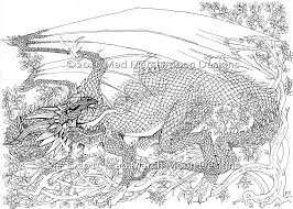 Small Picture New Dragon Adult Colouring Pdf Booklet Now Available Mad Gekimoe