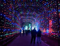 Holiday Light Tours Mn Minnesota Zoo Christmas Lights Get Into The Holiday