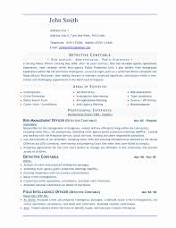 Standard Resume Format Doc Best Of Europass Cv Template Word