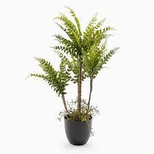 Os arranjos de flores artificiais são ideais para você que não tem muito tempo para cuidar de plantas ou precisa decorar um determinado cômodo com pouca incidência de luz natural. Planta Artificial Avenca A 76cm Loja Viva Online