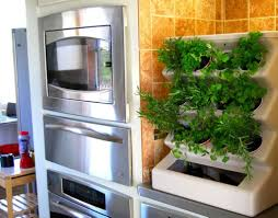 Indoor Kitchen Herb Garden Kit Kitchen Plant Window Home Design Ideas