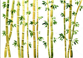 watercolor bamboo background stock photo