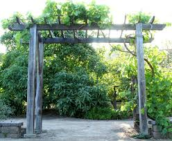 Free building plan for a gorgeous DIY friendly arbor / pergola: it will add  so