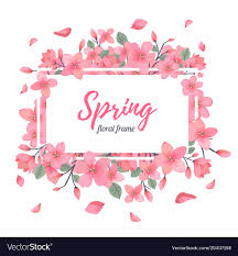 Spring Flower Template Tender Floral Summer Or Spring Frame Template Vector Image