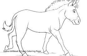 Drawing Pages Zebra Clip Art Coloring Pages Printable Adult Coloring Book Hand