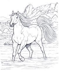 Cavallo Che Corre Libero Nella Natura Disegno Da Colorare Disegni