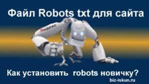 Правильный robots txt для сайта инструкция новичкам