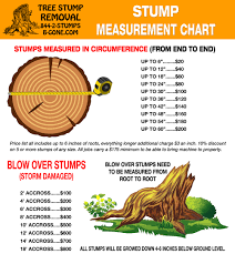 Tree Root Size Chart Root Measurement Chart Tree Stump Removal North Carolina