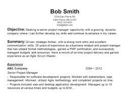 Examples Of Career Objectives For Resume Joele Barb