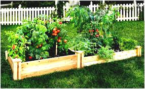 beautiful backyards splendid vegetable garden design ideas nz also