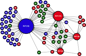 Plos One A Network Analysis Of The Propagation Of Evidence