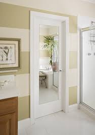 Mirror Door modern-bathroom