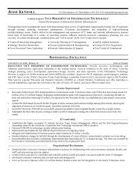 example vice president of informationtechnology resume samplesample resume