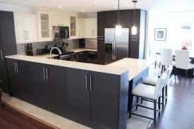 Wenge Wood Kitchen Cabinets Combining Stylestraditional Ivory Shaker Style Upper Cabinet