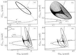 A continuous line drawing is produced without ever lifting the drawing instrument from the page. Bifurcation Diagrams Of The Fast Subsystem In Which The Slow Variable Download Scientific Diagram