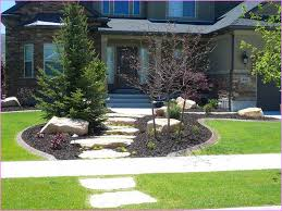 Small Picture Front Yard Grass With Ideas For Front Yard Landscaping No Grass