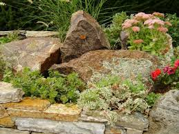 Small Picture 106 best Garden Waterwise images on Pinterest Landscaping ideas