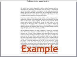 banking essay writing in marathi language