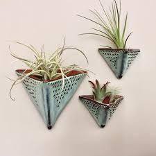 air plant holder wall planter