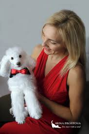 realistic poodle for adoption by irina prostova teddy bears on tedsby